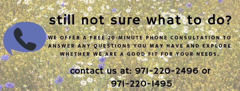 Phone Consultation (1)
